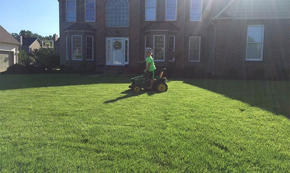 Lawn Service Olmsted Falls OH